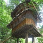 KIDS tree house DIY