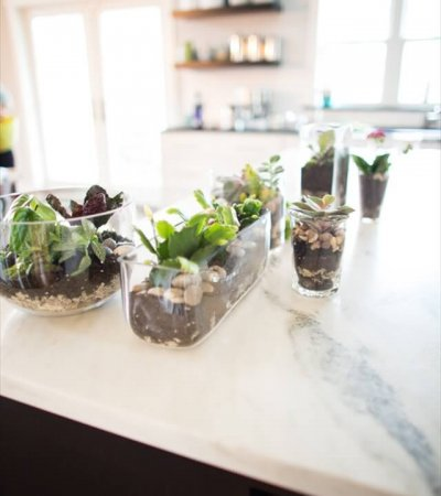 Combination of Soils and Pebbles – DIY Hostess Gift