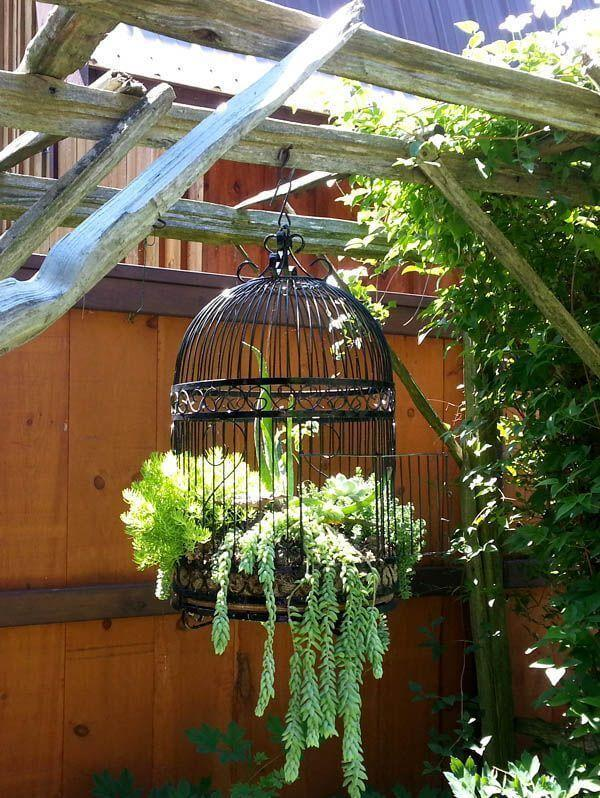diy bird cage garden project