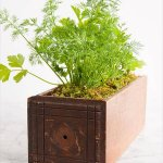 reclaimed wooden drawer herb garden