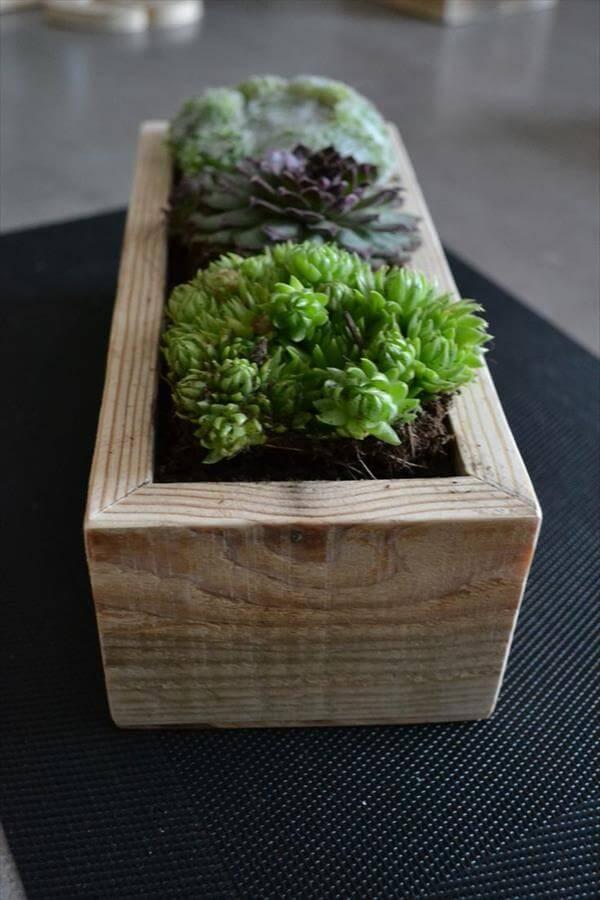 pallet flowers box
