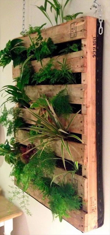 wall organize planter